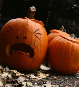 carved sad jack-o-lantern pumpkins